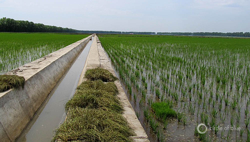 Agricultural Irrigation Canal : Food supply fracking and water scarcity challenge china