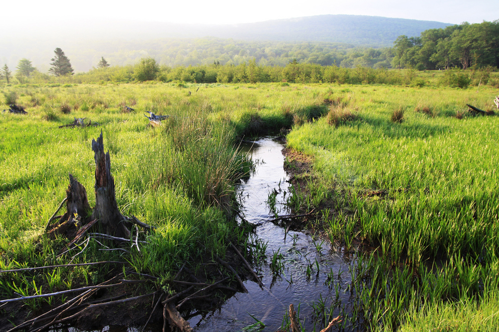 United States Clean Water Rule Quandary Begins On Land