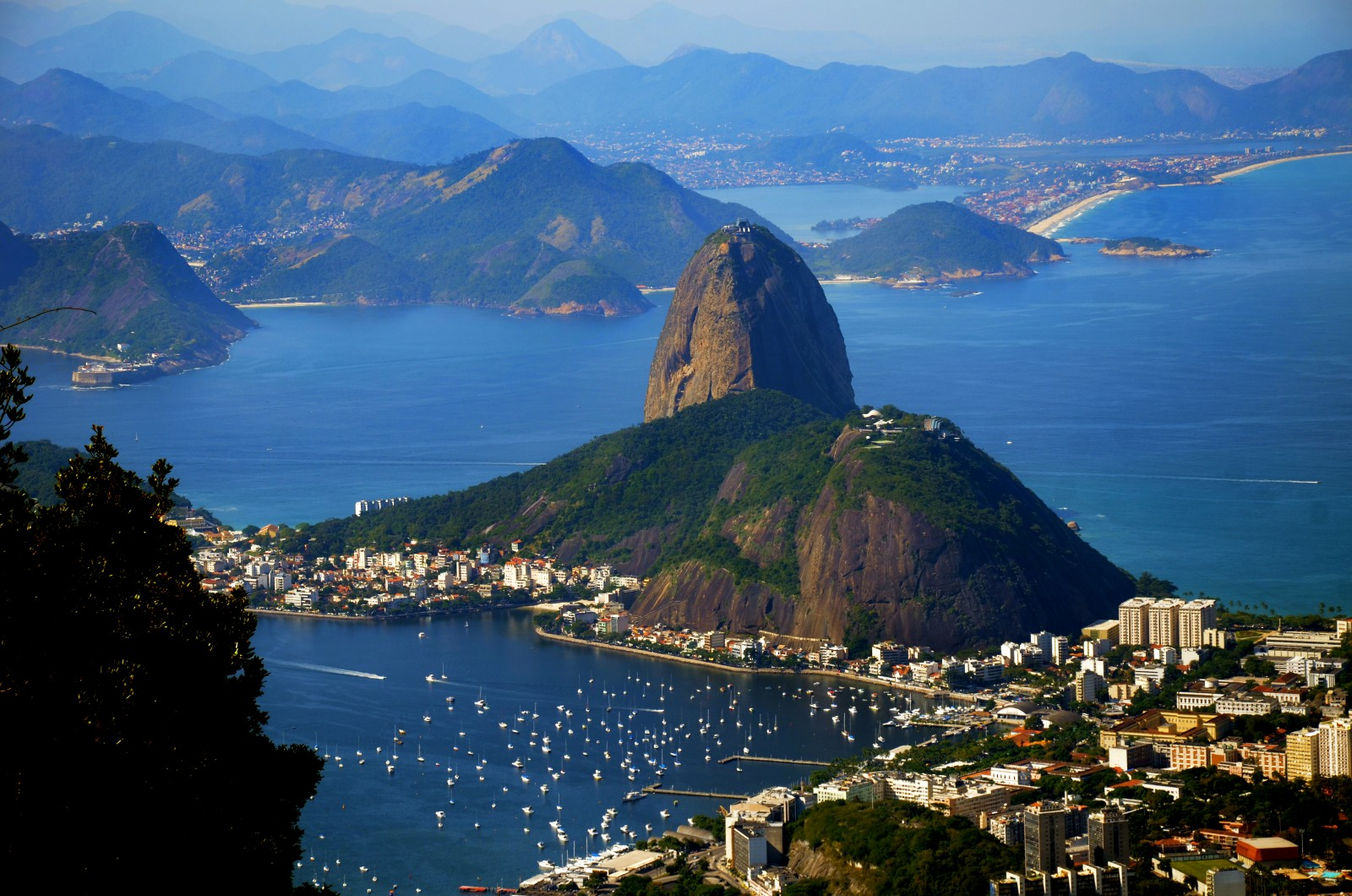 20. Essay Question:report on brazil?